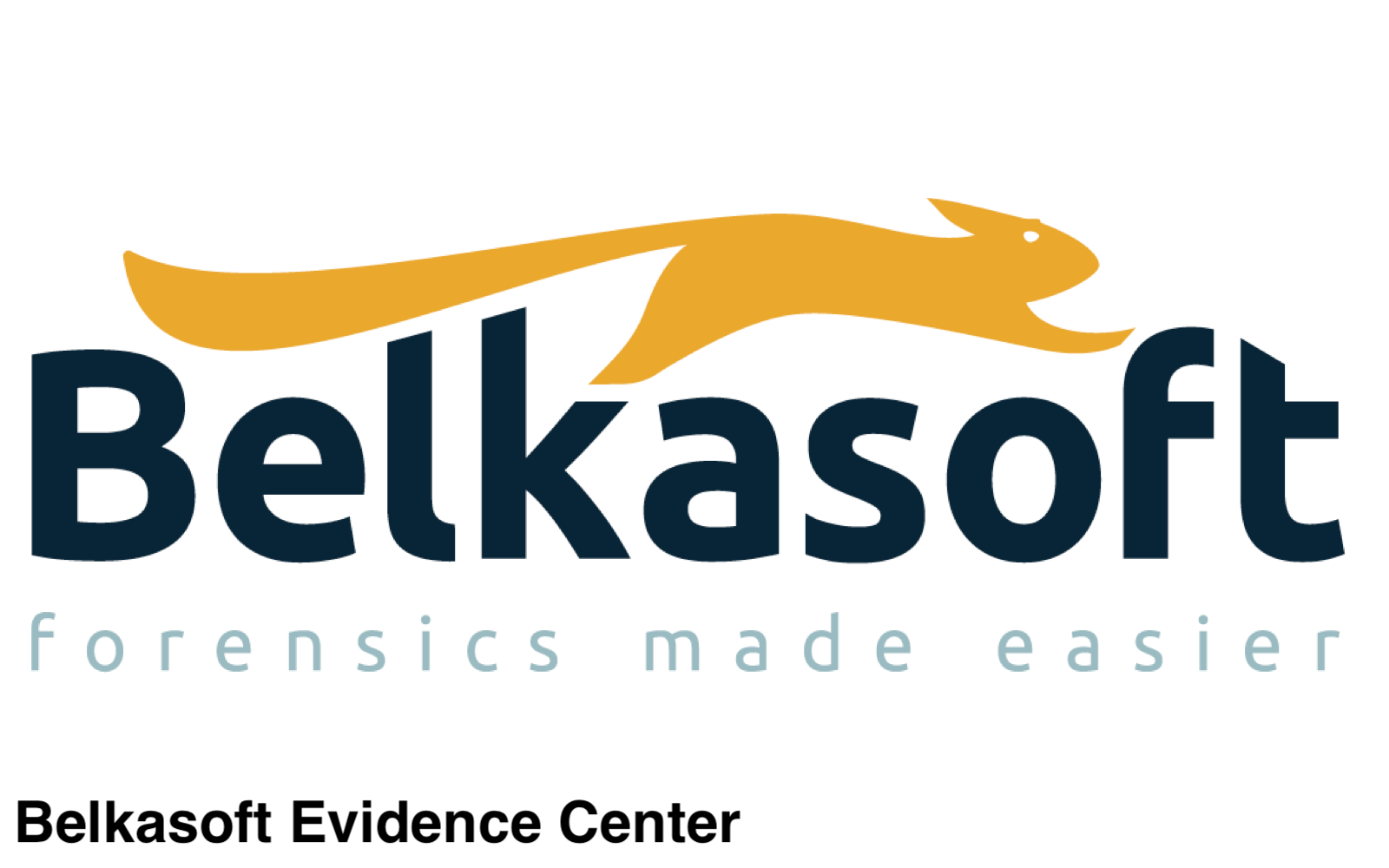 Belkasoft logo