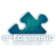 e-Forensic Services