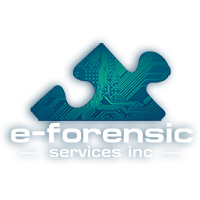 e-Forensic Digital Forensic Services